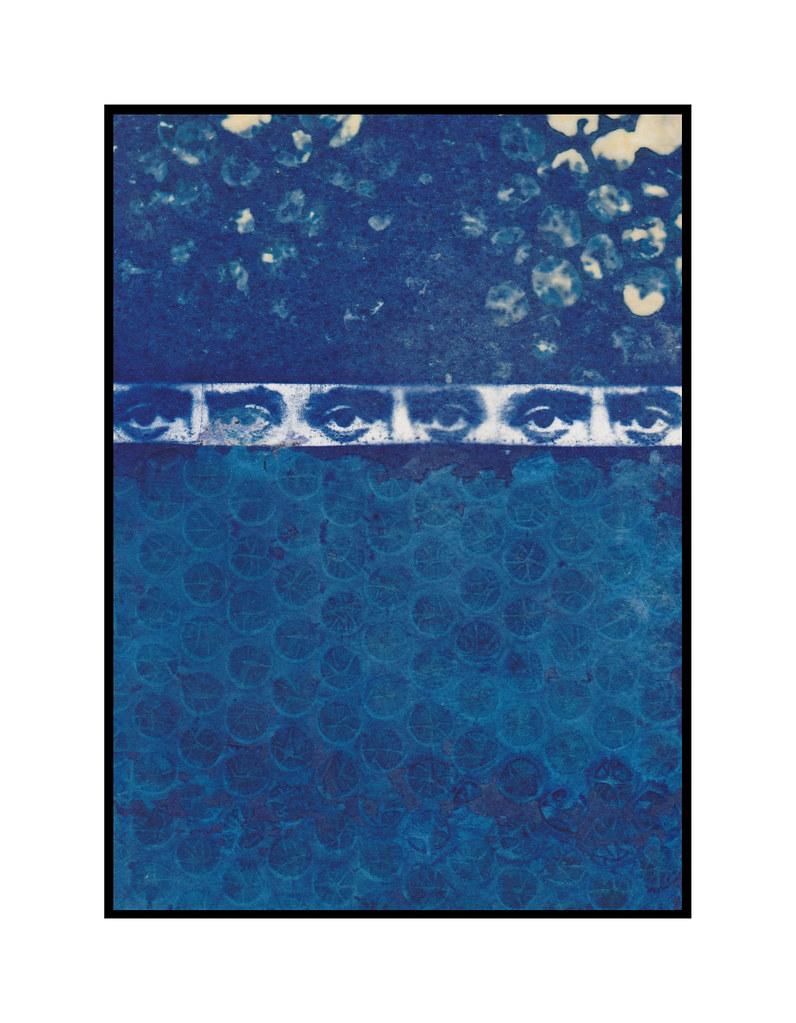 cyanotype no. 7