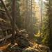 Tiveden Nationalpark Höst I by Gustaf_E