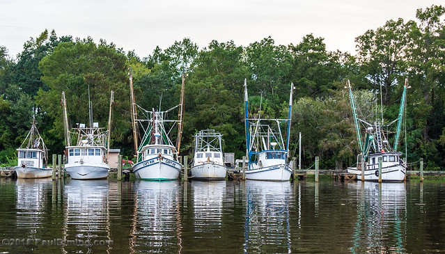 Mill Pond Marina on Scipio Creek, Apalachicola, FL
