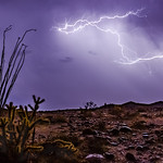 12. Oktoober 2018 - 23:51 - Nice lightning bolts looking north from the top of Sweeney Pass in the southern portion of Anza-Borrego Desert State Park. This bolt was VERY close by - almost too close for comfort. I heard and felt the loud BOOM of thunder almost immediately after seeing the flash of the bolt. If the sky here has kind a fake or 'plastic' feel to it, it's because it was POURING rain at the time and this was a long exposure. The pouring rain appears like a coat of glossy clear paint as a result. No Photoshop work here.  In order to shoot this shot, I placed my camera rig under a folding table to shield it from the pouring rain. Luckily the rain was coming straight down and not blowing sideways - otherwise I'd be making an insurance claim on my gear. Haha. While the weather station on my camper registered only 0.04' of rain up here, it all came down with about 30 minutes or so. Among the commotion, I didn't have much time to carefully frame my shot before shooting this frame as part of a timelapse - I made sure to get the ocotillo and cholla in the fame to the right, then had to start shooting and seek shelter under the canopy of my trailer.  On Friday night (October 12, 2018) I got to experience the most epic thunderstorm I've ever seen in southern California. I know I may have said something similar a week or two ago, but this one tops ALL thunderstorms I've experienced out here.