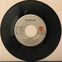 DELEGATION:PUT A LITTLE LOVE ON ME(RECORD SIDE-B)