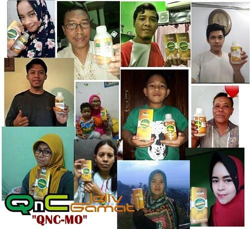 Stokis / Agen QnC Jelly Gamat Blora, Jepon, Tunjungan, Bogorejo, Japah