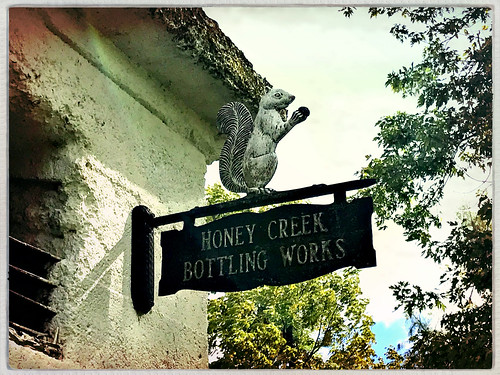 Honey Creek squirrel sign