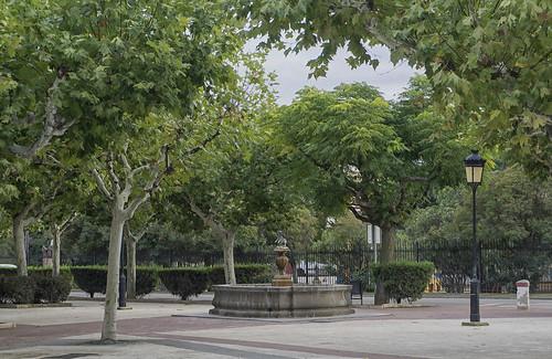 Campo del Toro. Cariñena