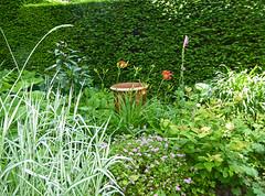 2018.06.20.079 CASTILLON - Les jardins, allée des fleurs