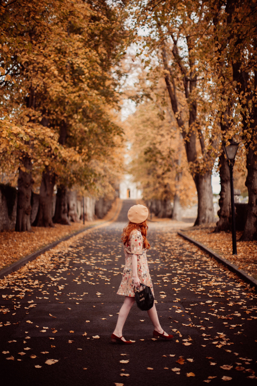 autumn path-13