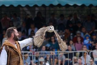 St Ives Medieval Faire 2018