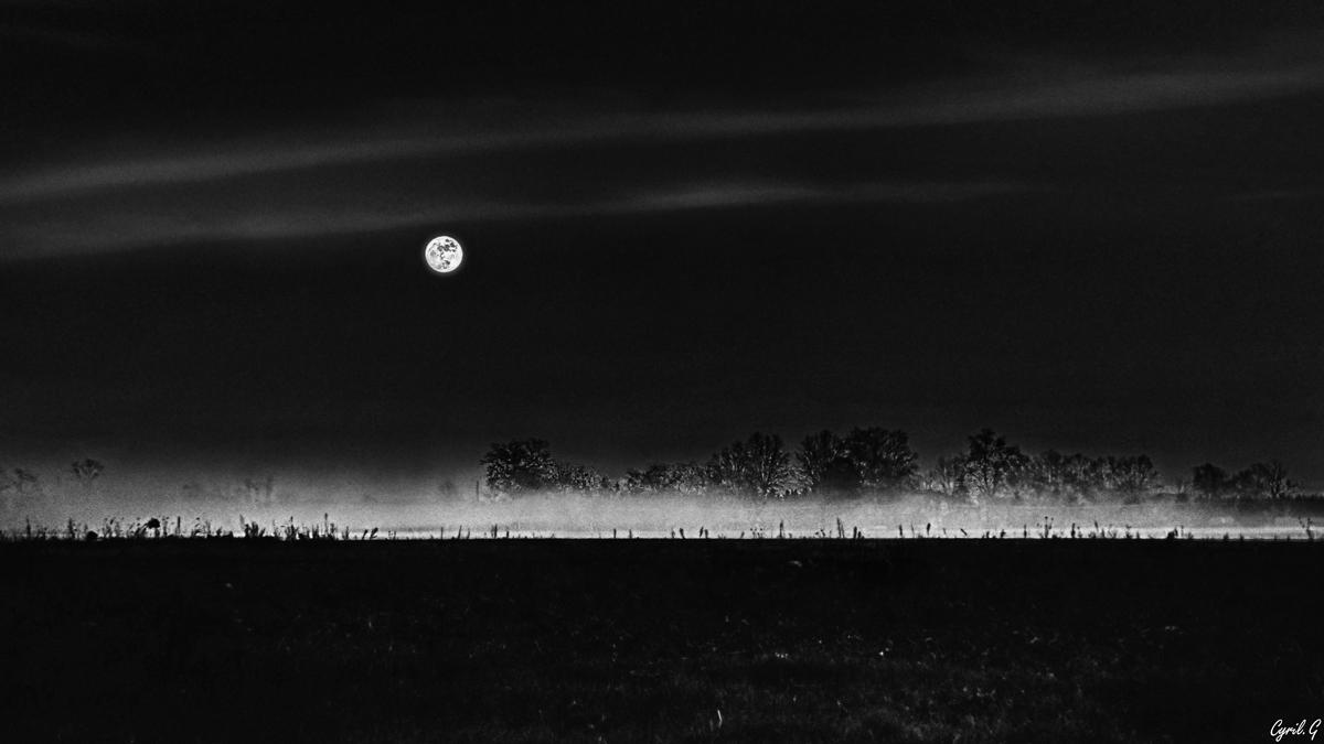 La nuit des loups-garous 31814507958_d8c178dd4c_o