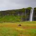 Seljalandsfoss Waterfall along the South Coast near Hvolsvöllur Iceland