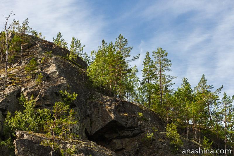 Деревья на скале, остров Каарнетсаари, Ладожское озеро