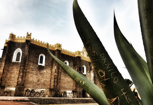 Agave in front of a church in Cholula, Mexico, run through the photo app Snapseed