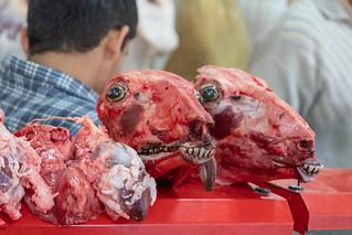 Schafsköpfe, Kollektivmarkt Buchara