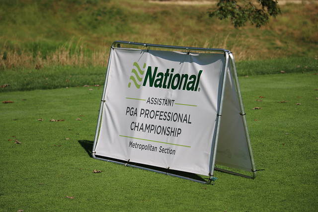 2018 Assistant Professional Championship