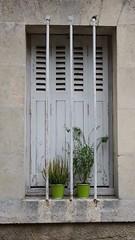 Avoir la main verte… - Photo of Saint-Pierre-de-Maillé