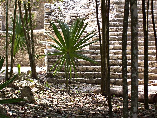 Amazing Mexico