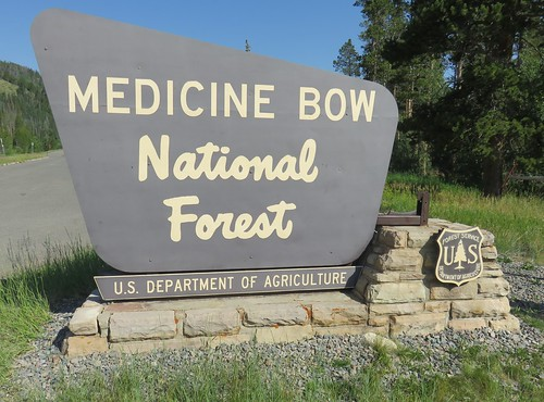 Medicine Bow National Forest Sign (Albany County, Wyoming)