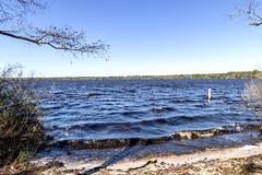 Jones Lake NC - NC Bay lakes