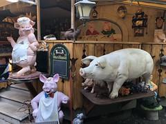 Annecy: Le Cochon à l'Oreille