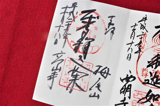 kosanji-gosyuin001