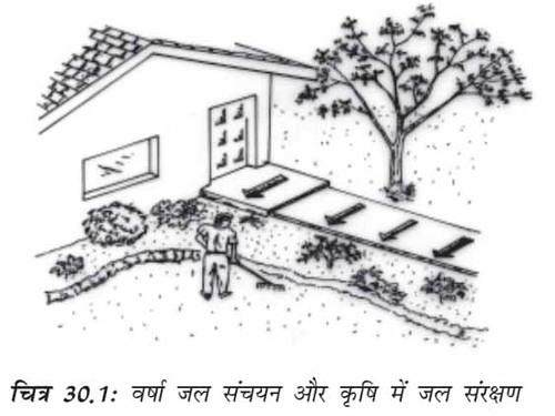 वर्षाजल संचयन और कृषि में जल संरक्षण