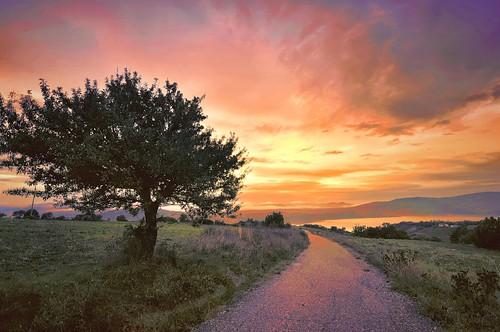 * landscape photographer *
