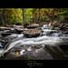 Kaaterskill Creek
