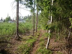 Bak Guderudløkka - Korsegård/Korsgård - Askim - Østfold - Norway