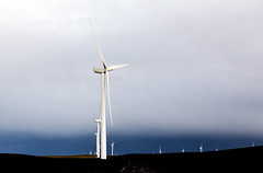 A wind farm off California Rt. 12 near Rio Vista in Solano County, California. Original image from Carol M. Highsmith's America, Library of Congress collection. Digitally enhanced by rawpixel.