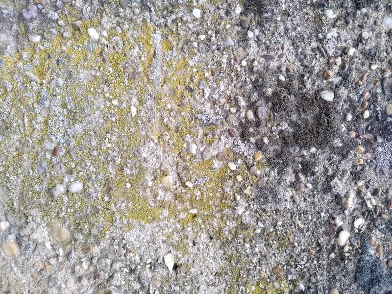 Concrete texture #39
