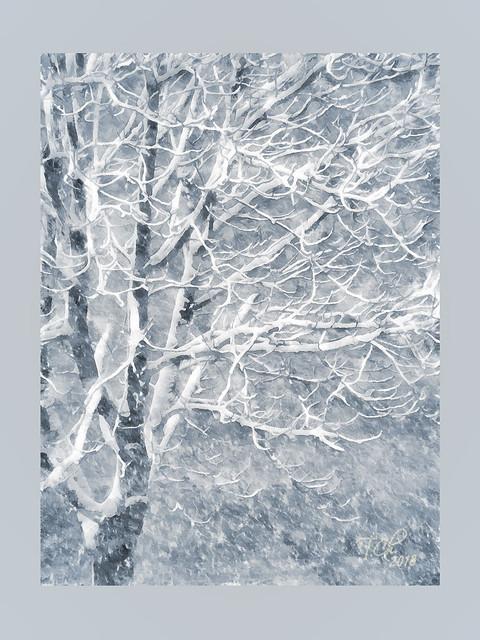 Дерево и снегопад / Tree and snow