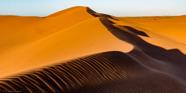 Urala Dunes, Nikon D750, Sigma 150-500mm F5-6.3 DG OS APO HSM