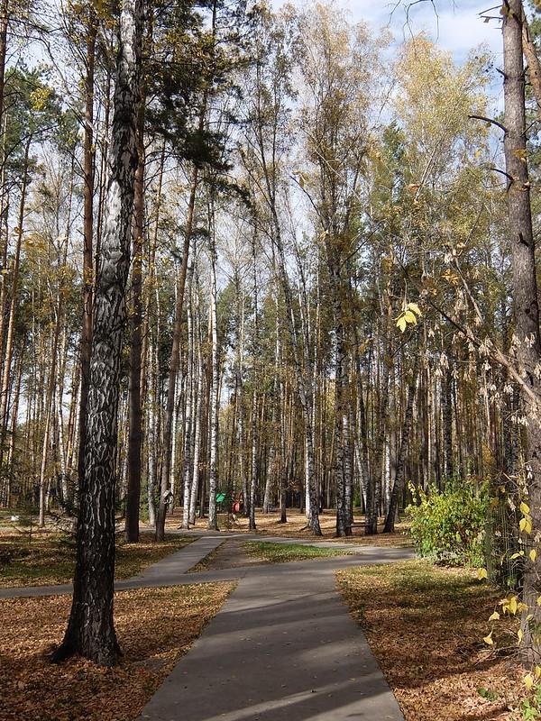 Новосибирский академгородок - Парк с детской площадкой
