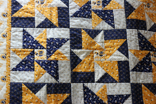 105: Cheddar Stars - Jill Valko