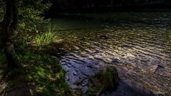 2018 09 29 Lac de la Maix-752399 - Photo of Grandfontaine