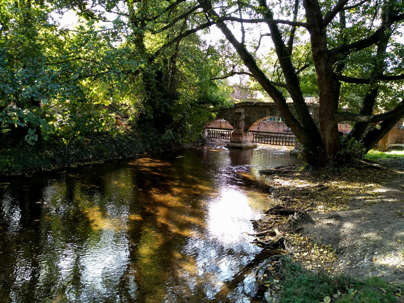 River Darent Farningham