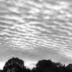 Cloud Patterns; Long Island, New York