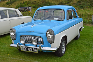 Picture 108 - Scottish Ford Day 2017