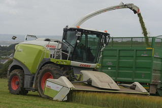 Claas Jaguar 970 Self Propelled Forage Harvester with a Direct Disc 520 Header