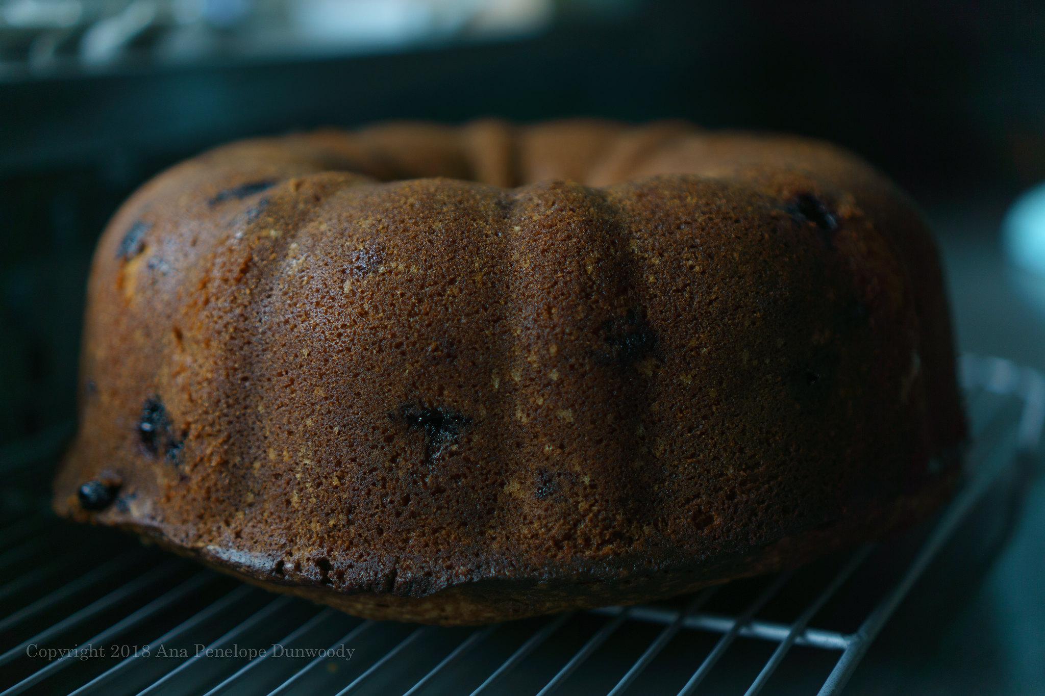 Lemon Blueberry Pound Cake 19 1000 Ana Penelope