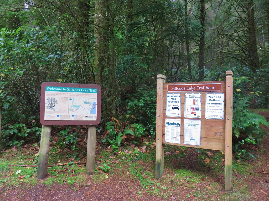 Siltcoos Lake Trailhead