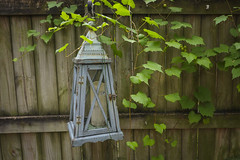 Gulfport, Florida: Lamp in Courtyard
