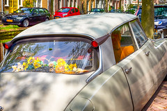 Travelling Through the Europe. Old Fashioned Retro Car with Flowers on Rear seat in Front of Modern Cars on The Background in Small Dutch City Outdoor.