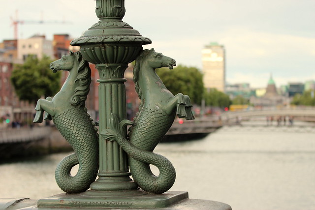 Above  Liffey river, Canon EOS 600D, Canon EF 70-200mm f/4L IS