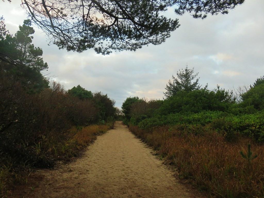 Waxmyrtle Trail