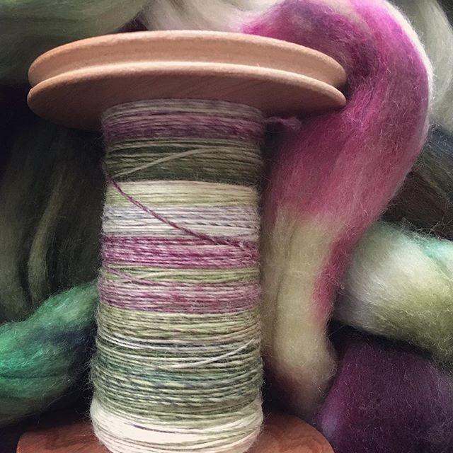Next #spinning project. Polwarth / silk 'Jade Chopsticks'. #hobbledehoy