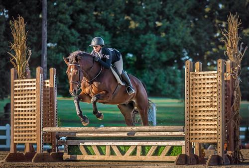 nx500 samsungnx500 equestrian samsungnx85mmf14