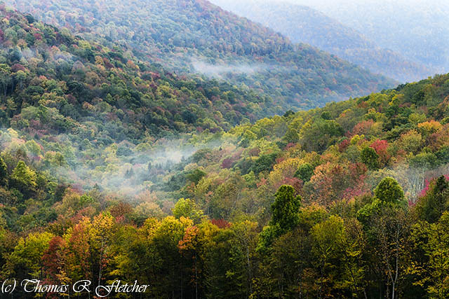 Autumn Hillsides with Mist