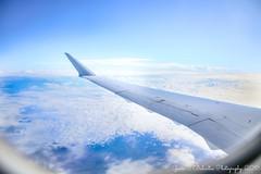 Flight ...
