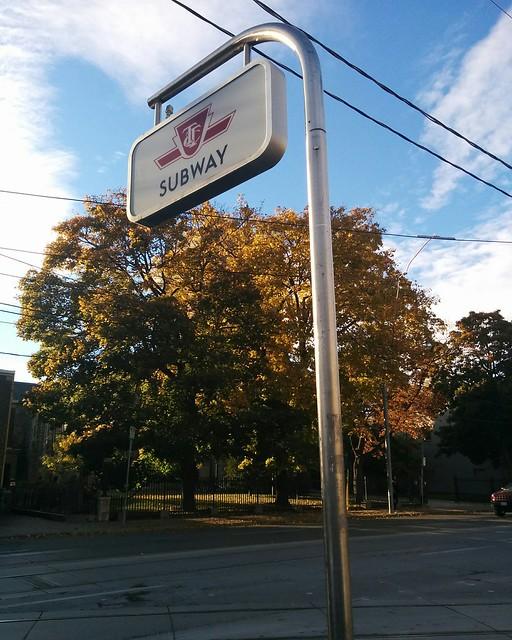Fall foilage by St. Peter's Church #toronto #theannex #bathurststreet #fall #autumn #trees #stpeterschurch
