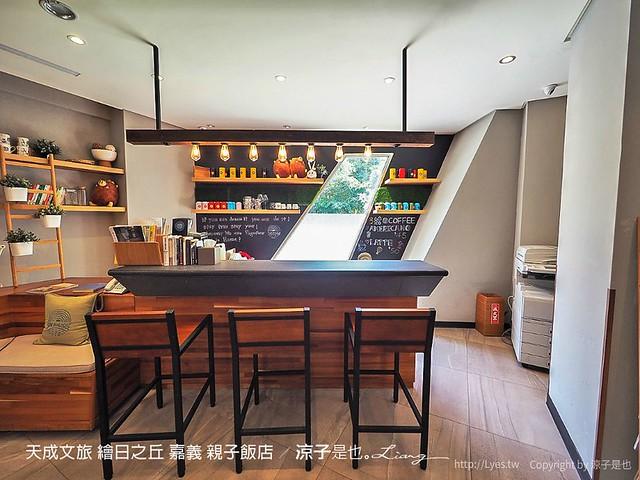 天成文旅 繪日之丘 嘉義 親子飯店 88